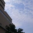 あみあみの雲