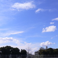 風のある日