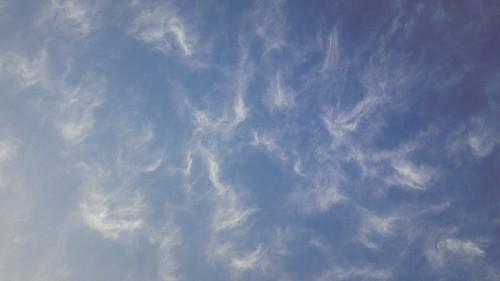 楽しそうな雲たち