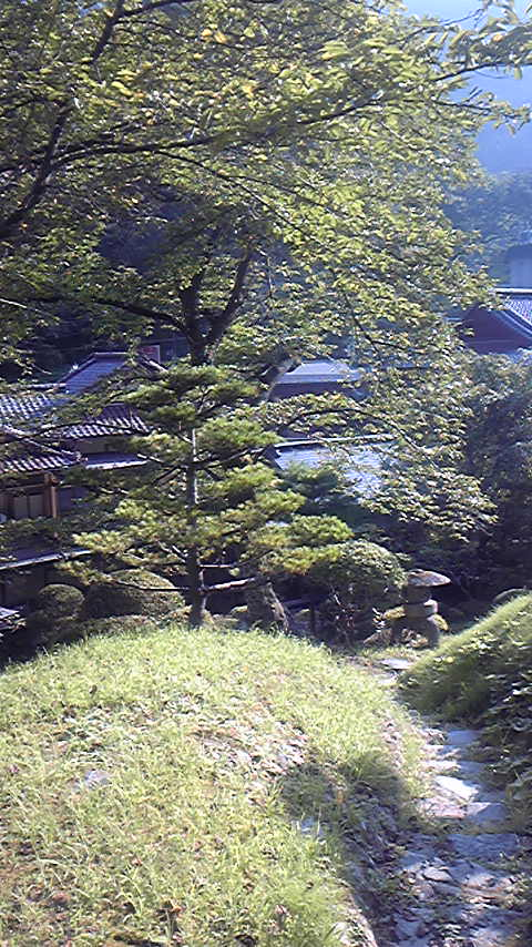 登録有形文化財の宿に泊まる〜向瀧〜